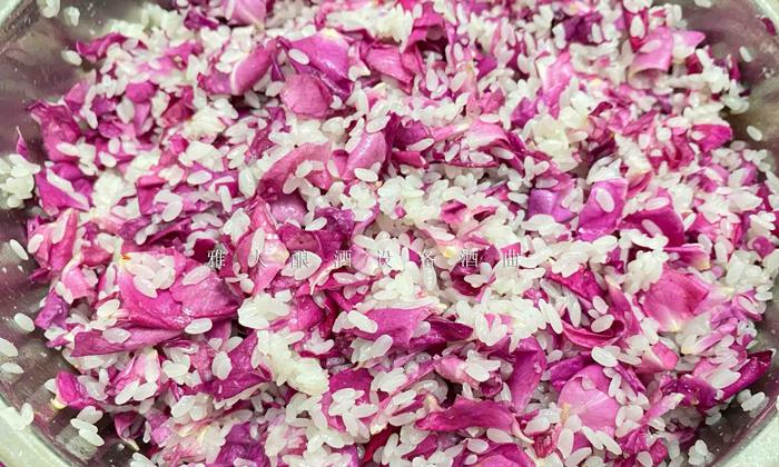 11.18玫瑰糯米酒酿酒技术-将糯米与玫瑰充分拌均