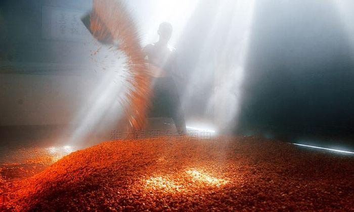 10.4固态玉米酒酿造技术