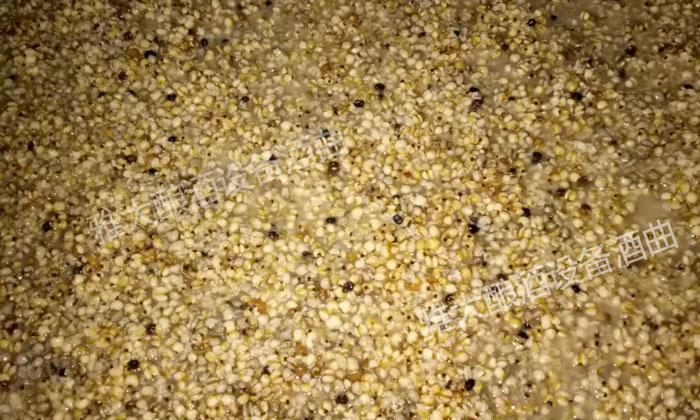 9.16液态薏米酿酒技术—薏米酒发酵中