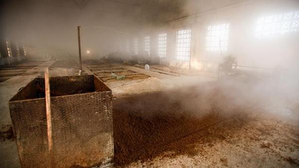 11.7二锅头酿酒方法-窖池发酵
