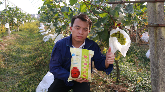 2.27葡萄种植基地