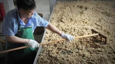 千百次试验不如来雅大酿酒设备厂家学3天酿酒技术