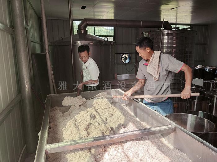 11.20雅大蒋总上门指导大米酒制作