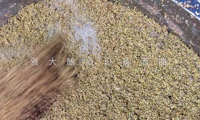 6.2藜麦酿酒工艺-上甑