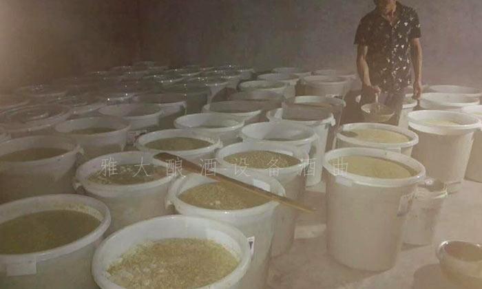 11.4猕猴桃酿酒技术-发酵