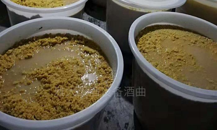 16-玉米生料酿酒