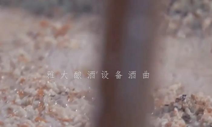 21-菊花糯米酒3