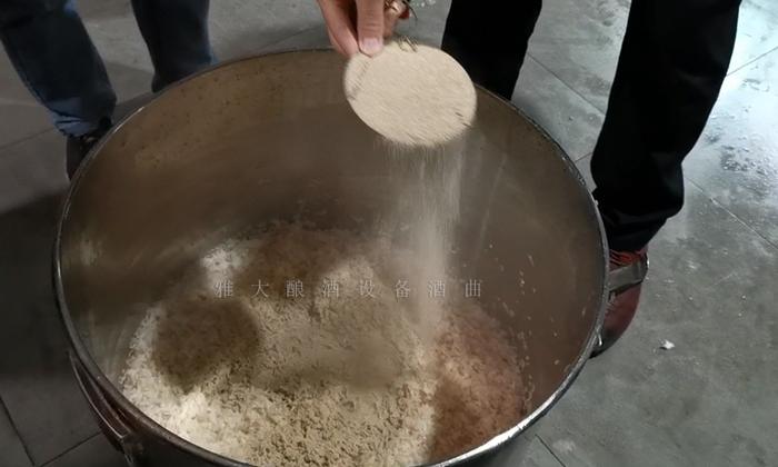 10.21柚子酒酿酒技术-加酒曲