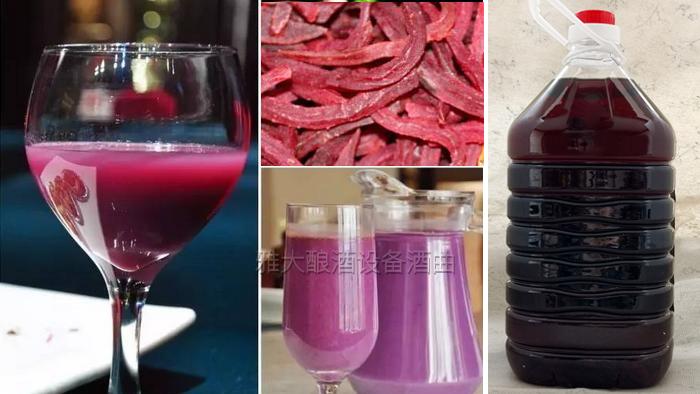 10.13紫薯黄酒酿酒技术