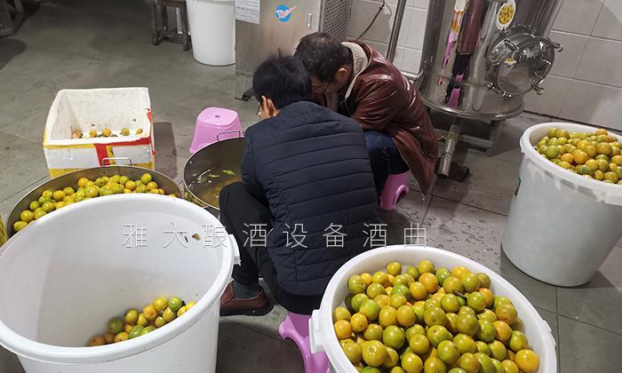 雅大酿酒机械技术老师研发黄帝柑酒