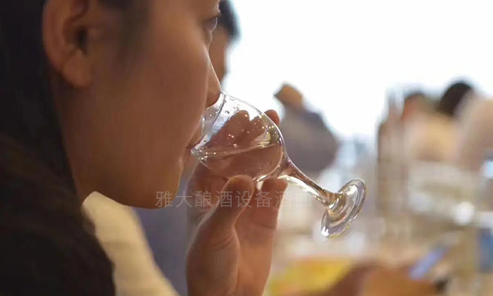 品酒喝白酒1