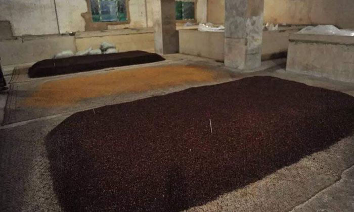 26-传统酿酒玉米糖化4