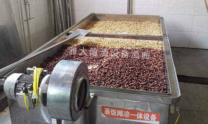 开始用摊晾蒸煮酿酒设备蒸粮