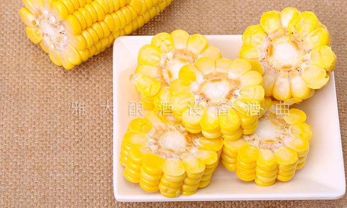 6.20饮酒前先啃一根煮熟的玉米