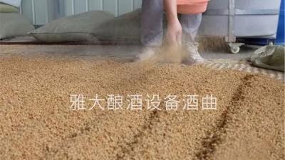 小麦酒怎么做?用烧酒设备酿造古老的小麦配糟固态酒!