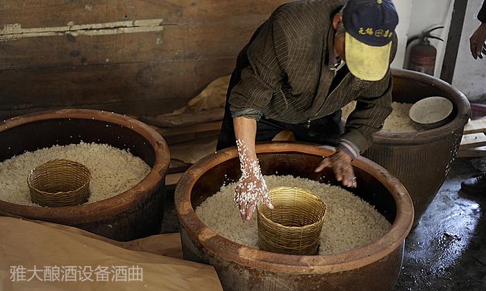 12.11大米酿酒技术—糖化
