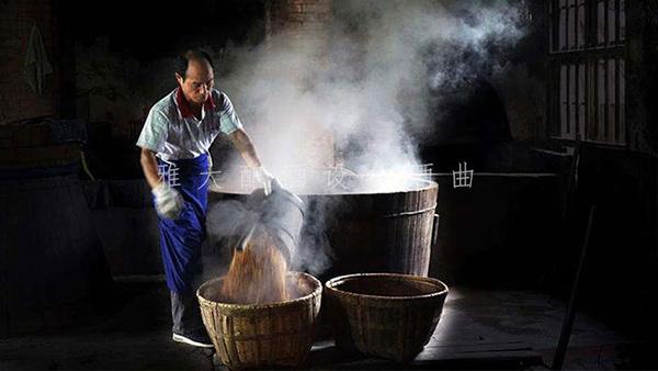 1.6用传统做酒设备做稻谷酒
