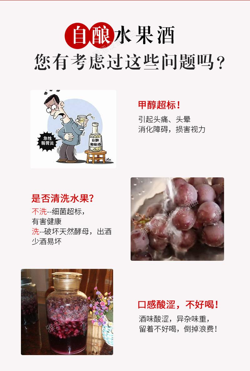 水果酒曲改_07
