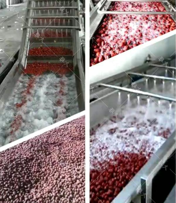 红枣自动清洗设备