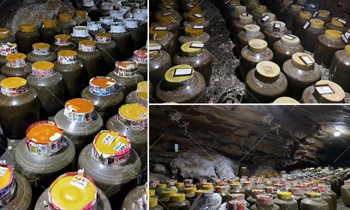 引进大型酿酒设备,酒旅融合,依托溶洞优势资源打造特色洞藏酒 8