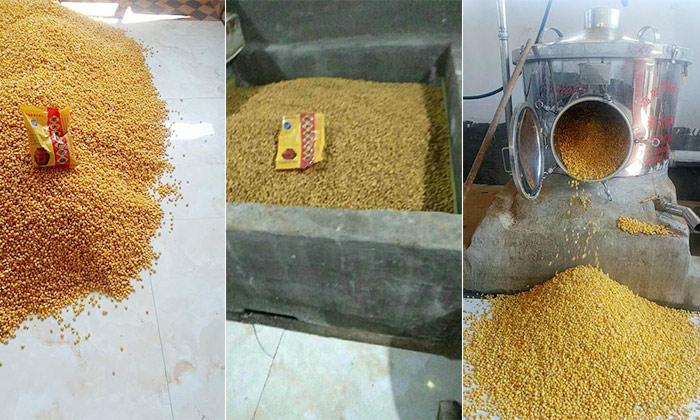 9.12用玉米酿酒设备酿造玉米酒全过程