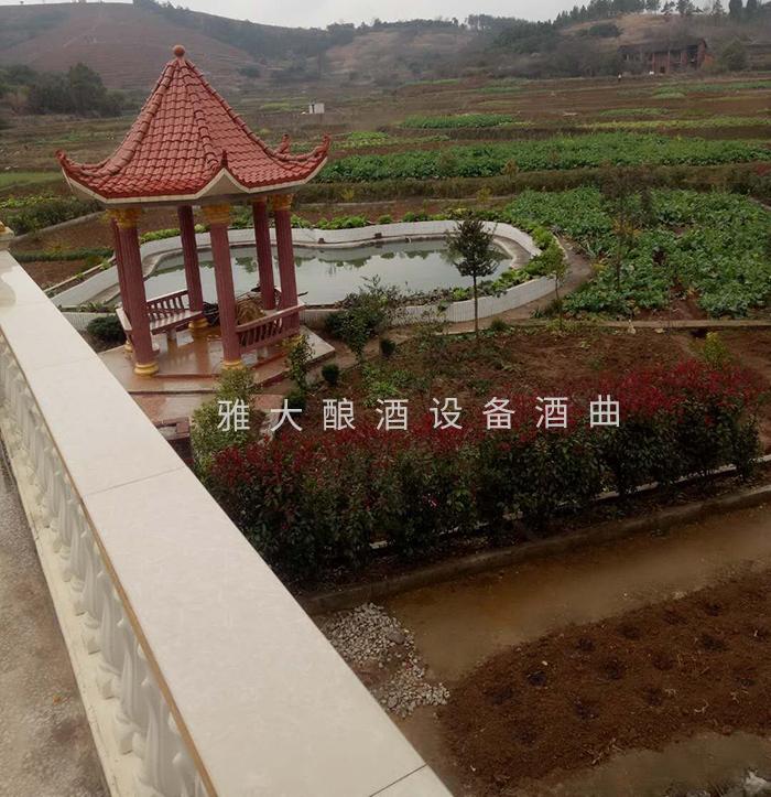 7.14将后花园改造成酿酒作坊
